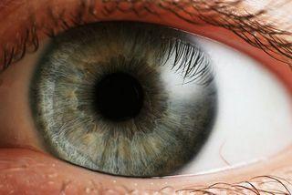 800px-Eye_iris