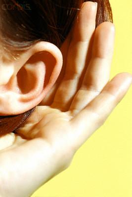 Listen-ear-evaluator-toastmasterjunkiecom-speech-toastmaster
