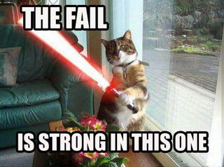 http://www.myspacefx.net/import/graphics/Funny_Graphics_and_Pics/lol-cats_the-fail-is-strong.jpg